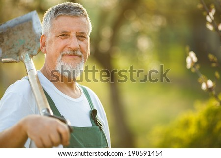 Portrait of a handsome senior man gardening in his garden (color toned image) - stock photo