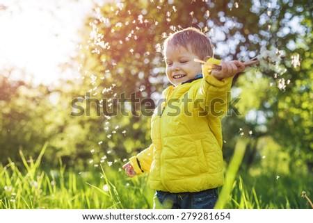 Portrait of a happy little boy holding dandelions - stock photo