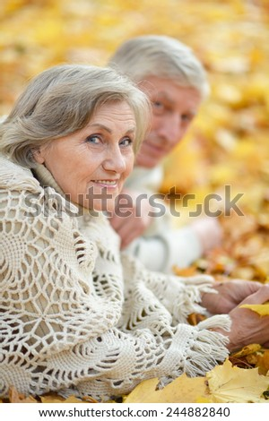 Portrait of a happy mature couple lying on the autumn leaves - stock photo