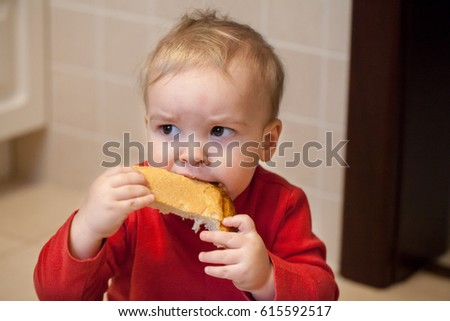 Portrait of a little baby boy, child, eating bread