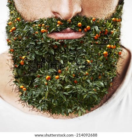 Portrait of a man with orange tree beard - stock photo