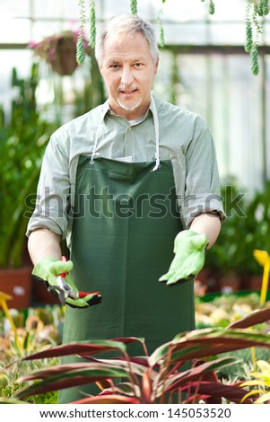 Portrait of a mature gardener in a greenhouse