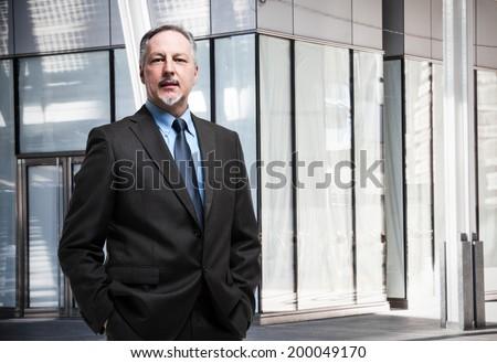 Portrait of a senior businessman - stock photo