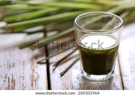 portrait of a shot glass of wheatgrass - stock photo
