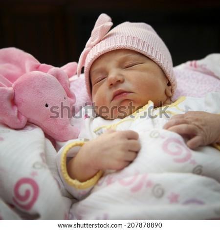 portrait of a sleeping newborn girl - stock photo