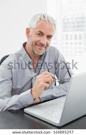 Portrait of a smiling mature businessman using laptop at desk in a bright office