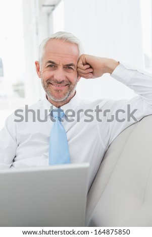 Portrait of a smiling mature businessman using laptop on sofa in living room at home