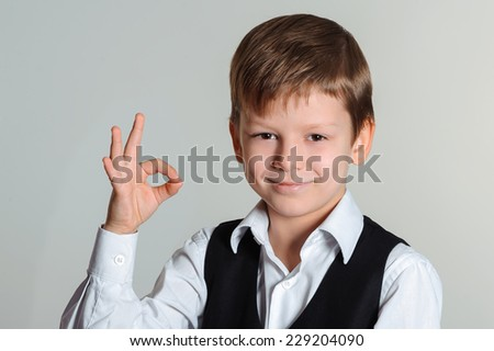 Portrait of a smiling schoolboy  showing ok sign - stock photo