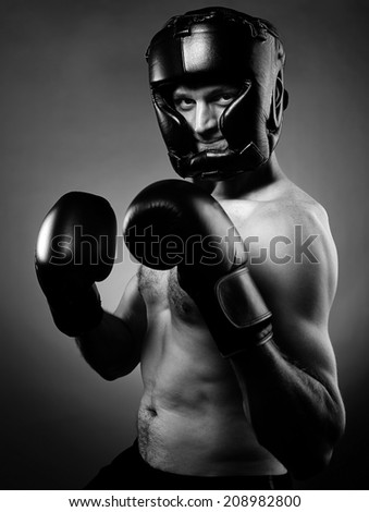 Portrait of a strong agressive boxer