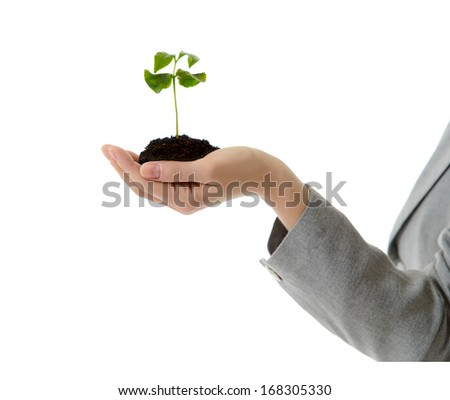 Portrait of a young beautiful smiling businesswoman in office clothes holding a handful of earth with a new plant  in her hands against white background - stock photo
