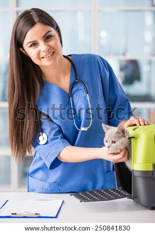 Portrait of a young female doctor with a cute beautiful cat. - stock photo
