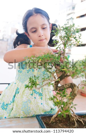 Portrait of a young girl trimming a bonsai tree on a terrace at home.