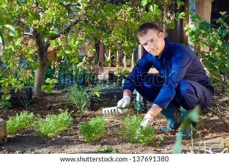 Portrait of a young man raking soil near parsley - stock photo