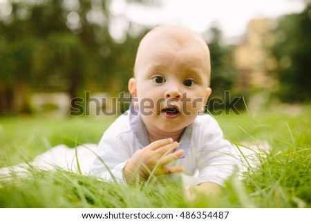 Portrait of ababy on the grass