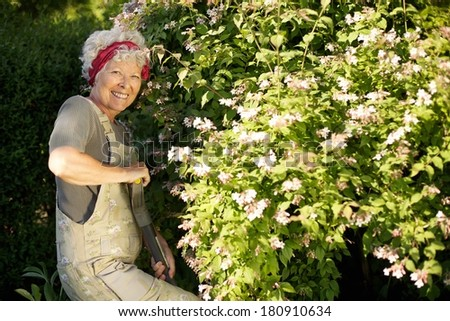 Portrait of active senior woman digging soil with shovel in garden. Elder woman working with gardening tools in backyard - stock photo