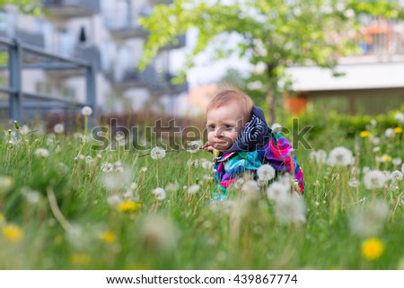 portrait of adorable blond scandinavian baby toddler sitting on green lawn with white dandelions in park - stock photo