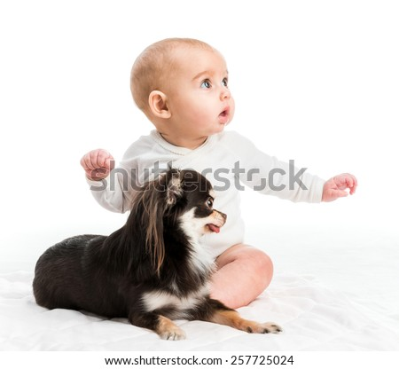 portrait of adorable five months smiling girl with her little dog isolated on white background - stock photo