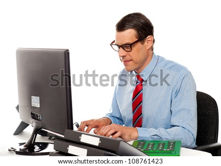 Portrait of an accountant working on computer in office