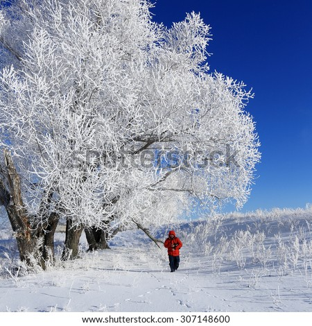 portrait of an adult cheerful man with a beard and mustache in a red jacket in the snowy woods  - stock photo