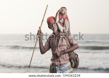 Portrait of an Indian old man with monkey - stock photo