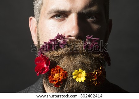 Portrait of attractive unshaven man with long beard and hendlebar flowerbed moustache with marigolds flowers orange red and yellow violet purple color on black background, horizontal picture - stock photo