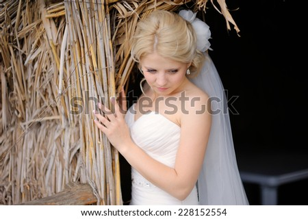 portrait of beautiful blonde bride. - stock photo