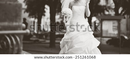 Portrait of beautiful bride wearing wedding dress.  - stock photo