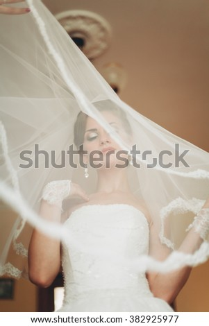 Portrait of beautiful bride with fashion veil at wedding morning. Wedding dress