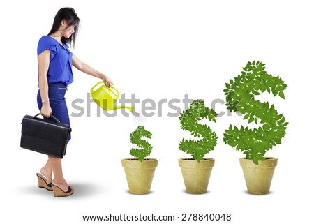 Portrait of businesswoman watering the money trees to keep its growth, isolated over white - stock photo