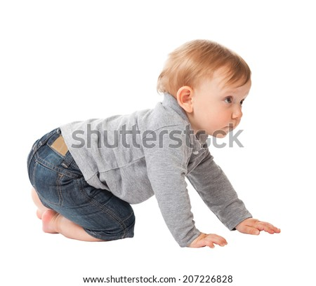 portrait of child crawl on white background