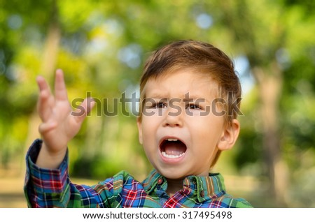 Portrait of crying little boy in summer park - stock photo