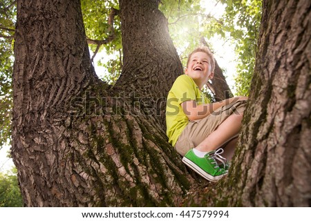 Portrait of cute kid boy sitting on the big old tree on sunny day.  Child climbing a tree. little boy sitting on tree branch. Outdoors. Sunny day. Active boy playing in the garden. Lifestyle concept - stock photo