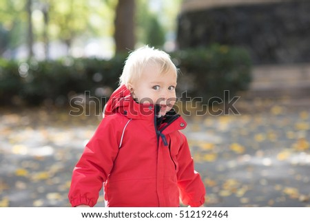 Portrait of cute little toddler baby boy in the park