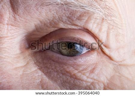Portrait of elderly woman. Closeup view. - stock photo