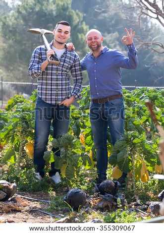 Portrait of farmers standing in a garden bed with growing cabbage. One farmer is holding a shovel on his shoulder and another is showing an ok sign with his hand