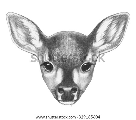 Portrait of Fawn. Hand drawn illustration. - stock photo