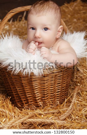 Portrait of funny baby in woven basket on pile of straw background