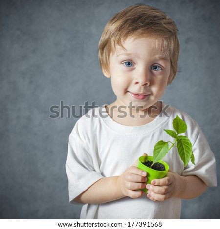 Portrait of funny little boy with window plants - stock photo