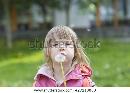portrait of girl in preschool age wearing pink clothing standing on green lawn in town outdoors and blowing dandelion  - stock photo