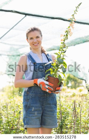 Portrait of happy gardener holding potted plants at greenhouse - stock photo