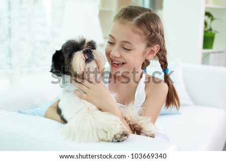 Portrait of happy girl holding shih-tzu dog and looking at it - stock photo