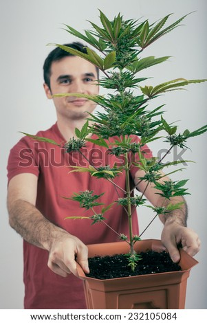 Portrait of happy man holding Cannabis plant in flowerpot.