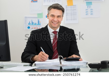 Portrait Of Happy Mature Businessman Working At Office - stock photo