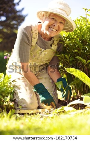 Portrait of happy senior woman planting new flowers in her garden - stock photo