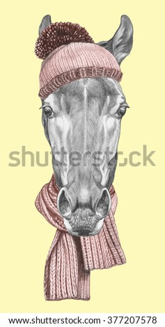 Portrait of Horse with hat and scarf. Hand drawn illustration. - stock photo