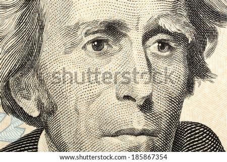 Portrait of Jackson macro from one twenty dollars bill - stock photo