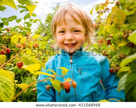 Portrait of little child among raspberry bushes