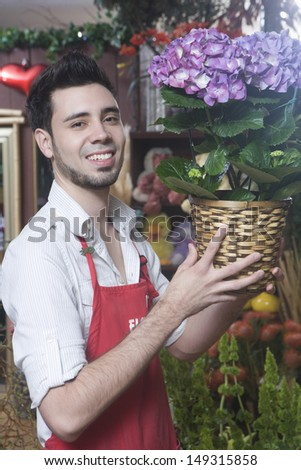 Portrait of male florist smiling while holding hydrangea plant in shop - stock photo