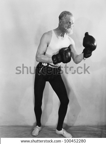 Portrait of mature boxer - stock photo