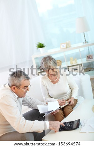 Portrait of mature husband and wife making financial revision at home - stock photo